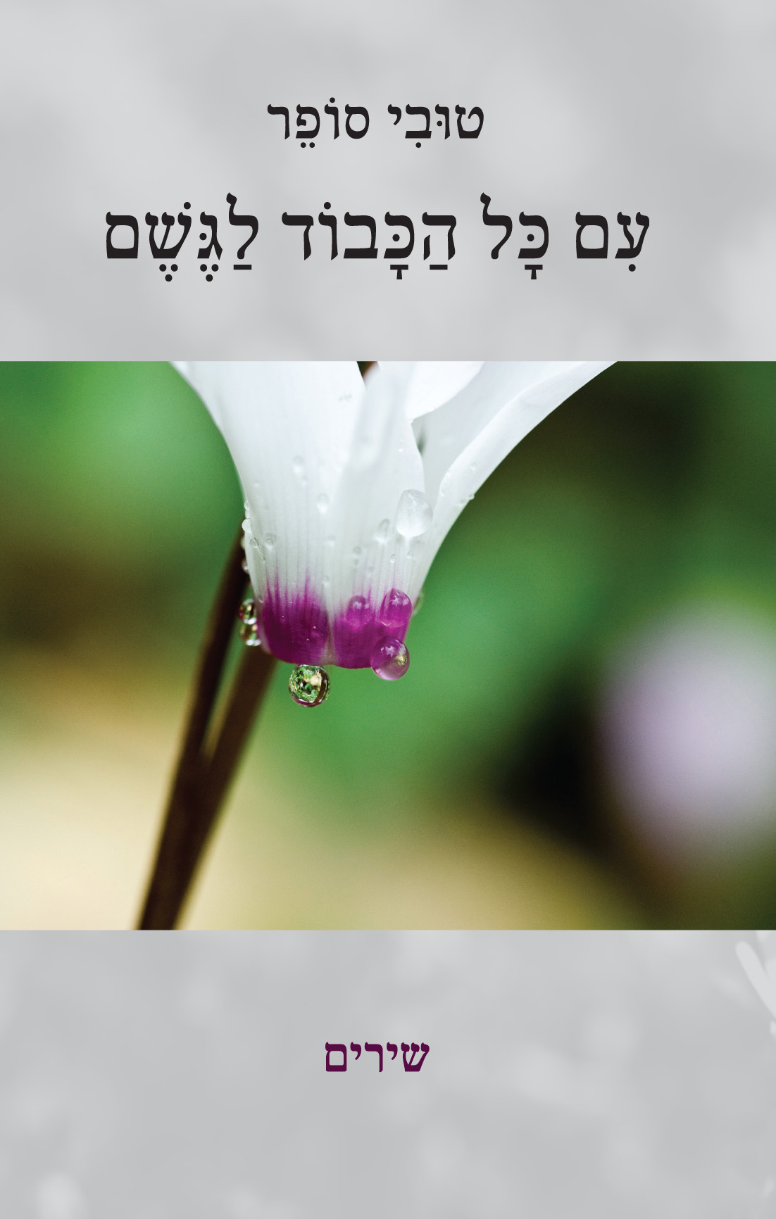 tovi sofer book